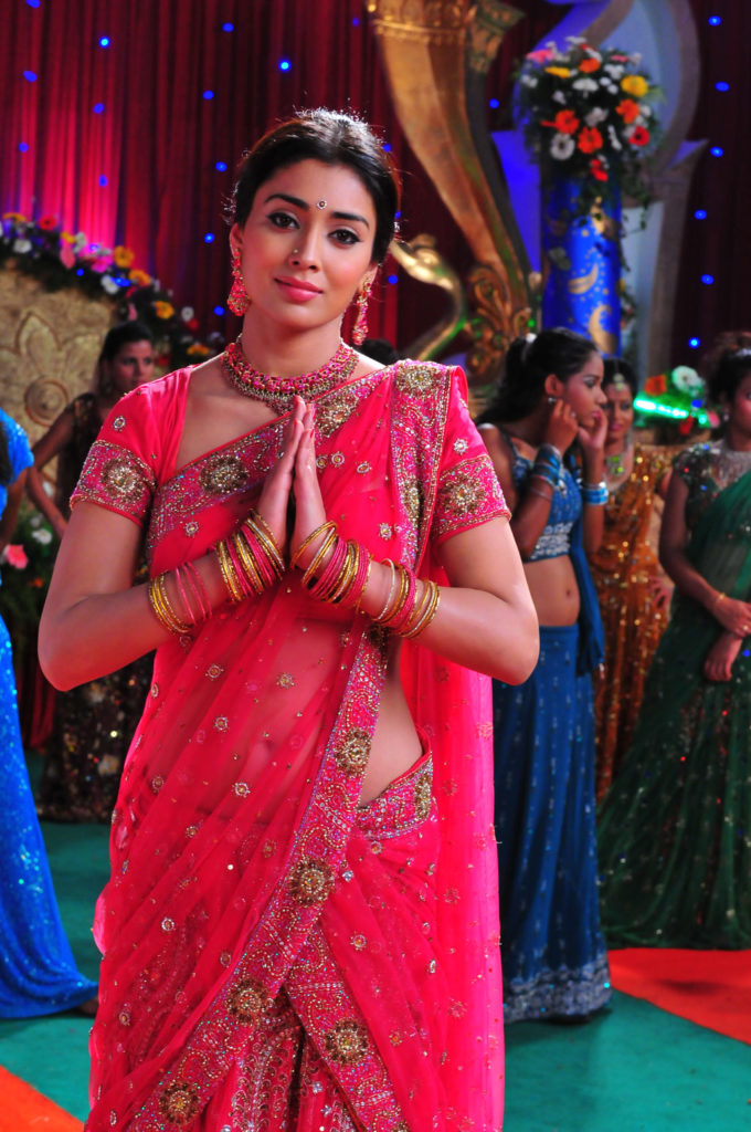 Shriya Saran in Traditional Sarees