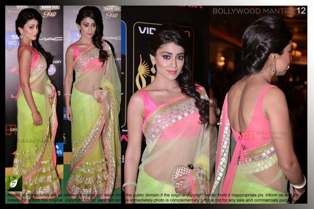 Bollywood & South actress Shriya saran stills in saree at IIFA 2013.