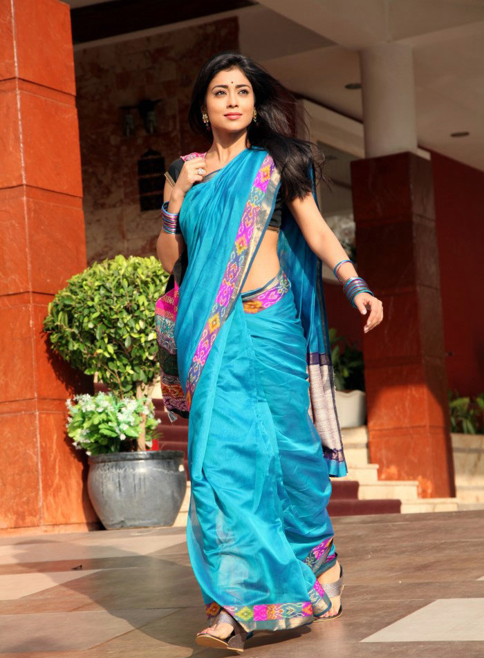 Shriya Saran Looks Beautiful in Blue Designer Saree