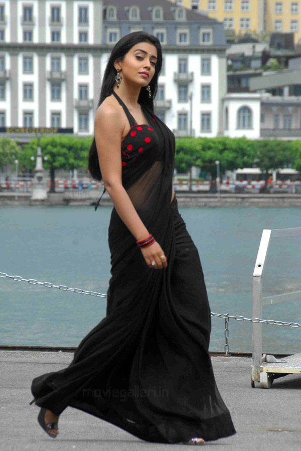 Telugu Actress Shriya Saran Hot Saree Photos Stills in Don Seenu Movie.